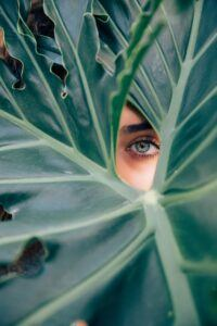 Who are your best customers - eye looking through leaves
