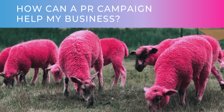 How Can A PR Campaign Help My Business?