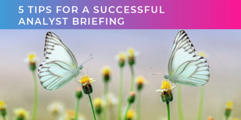 5 tips for a successful analyst briefing